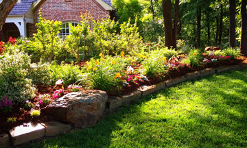 Flower Bed Design Services